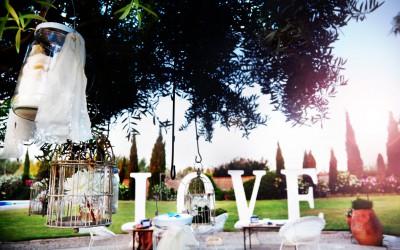 Der Hochzeitsplaner: Ein Muss für alle?